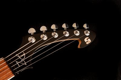Harpoon headstock