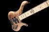 Xylem bass